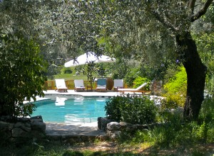 huzur vadisi pool, vegan retreat, meditation retreat europe