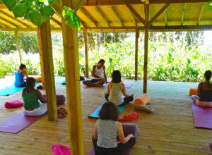 suleyman's garden, yoga beach holidays, vegan wellness
