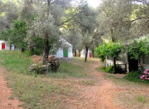 huzur vadisi yoga retreat turkey, retreat holidays in the sun, vegan wellness